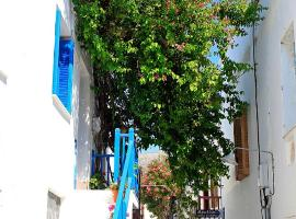 Hotel Photo: Bougainvillea House