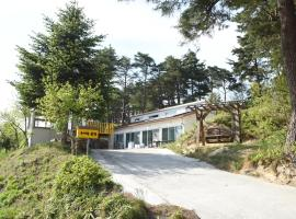 Hotel Photo: Pinetree Pension