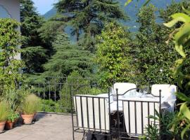 Hotel Photo: Elegant apartment in Villa with terrace and lake view