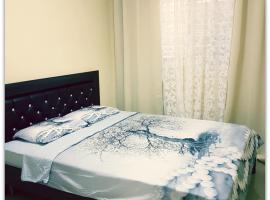 A picture of the hotel: Comfort Apartment