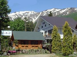 Hotel Photo: Hakuba Meteor Lodge