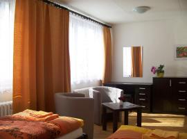 Hotel Photo: Apartment pri Steel Arene