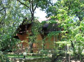 Hotel Photo: Splendid Wood Cabin