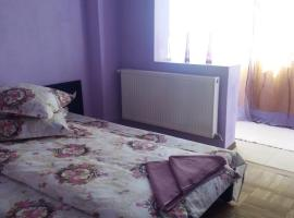 Hotel photo: Apartament Valcea