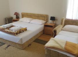 Hotel Photo: Guesthouse Soko