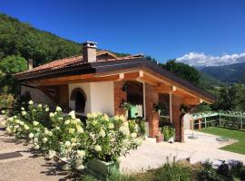 A picture of the hotel: Agriturismo Caranatura