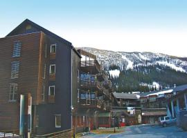 Hotel Photo: Apartment Hemsedal Staven