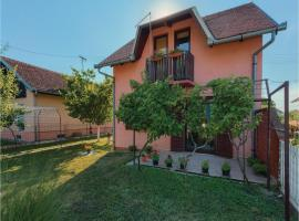 Hotel Photo: Studio Holiday Home in Dalj