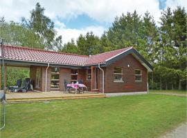 Hotel photo: Three-Bedroom Holiday home with a Fireplace in Silkeborg