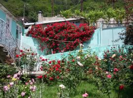 Hotel Photo: Guest House Green Rose