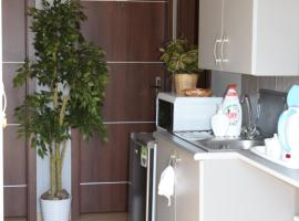 Hotel Photo: Guest House Trakutis