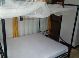 Hotel Photo: Backpackers Camp hostel