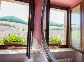 Hotel Photo: Country House Le Calvie
