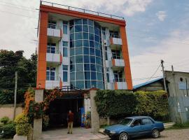 A picture of the hotel: Selam Adama International Hotel