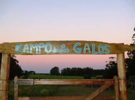 Hotel Photo: campo de los galos