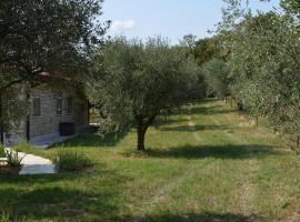 A picture of the hotel: Agriturismo Bosco Magico