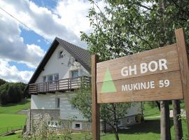Hotel Photo: Guesthouse Bor
