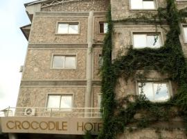 A picture of the hotel: Crocodile Hotels And Restaurant Limited