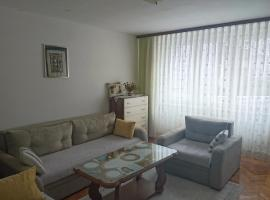 A picture of the hotel: Apartment Grbavica