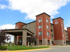 A picture of the hotel: Best Western Plus Omaha Airport Inn
