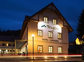 Hotel Photo: Hotel and guest house Triglav Dobrna
