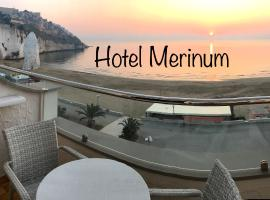 Hotel Photo: Hotel Merinum