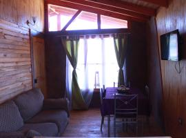 A picture of the hotel: Cabañas Rio Elqui Altovalsol