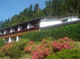 Hotel Photo: Pension Himmelreich
