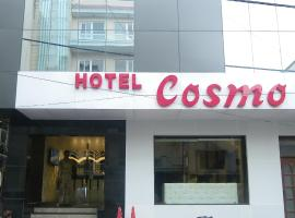 Hotel Cosmo New Delhi India