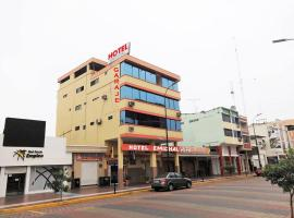 Hotel Photo: Hotel Emichal