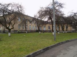 A picture of the hotel: Hostel Rubanovka 98