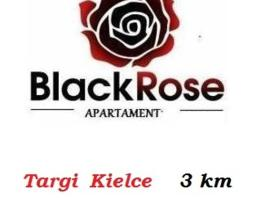 Hotel Photo: Black Rose