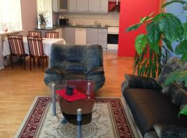 Hotel photo: Spacious apartment near Kaunas Castle/ Old Town