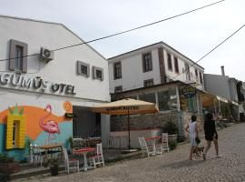 Hotel Photo: Gumus Hotel