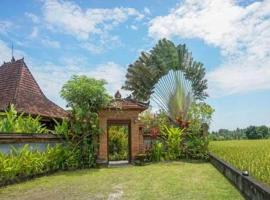 Hotel Photo: Rumah Sungai