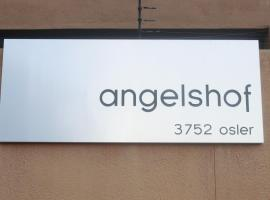 A picture of the hotel: Angelshof