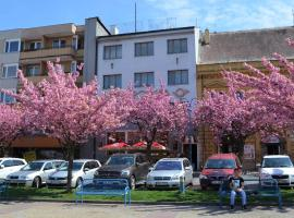 Hotel photo: Hotel Pošta