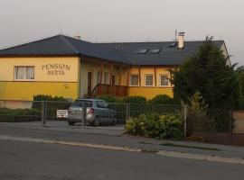 Hotel Photo: Pension Berta