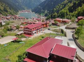 Hotel Photo: Uzungol Ada Apart
