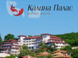 Hotel Photo: Hotel Kalina Palace