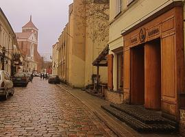 Hotel Photo: In the heart of Kaunas