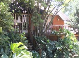 Treetops & Treats Guest House Pretoria South Africa