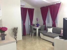 A picture of the hotel: Apartman Pink