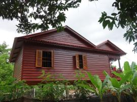 A picture of the hotel: Yanick's Angkor Cottage