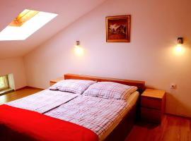 Hotel photo: Apartment Tolminka