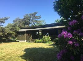 Hotel Photo: Ormen Lange - 3 bedroom cabin by the sea
