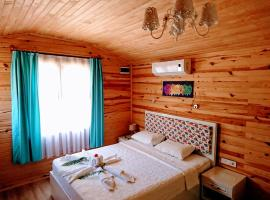 Hotel Photo: Simge Pension