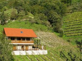 Hotel Photo: Holiday Home Vinyard Cottage Klopotec