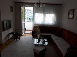 A picture of the hotel: Apartman Jela