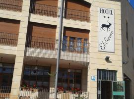 Hotel photo: Hotel El Gamo